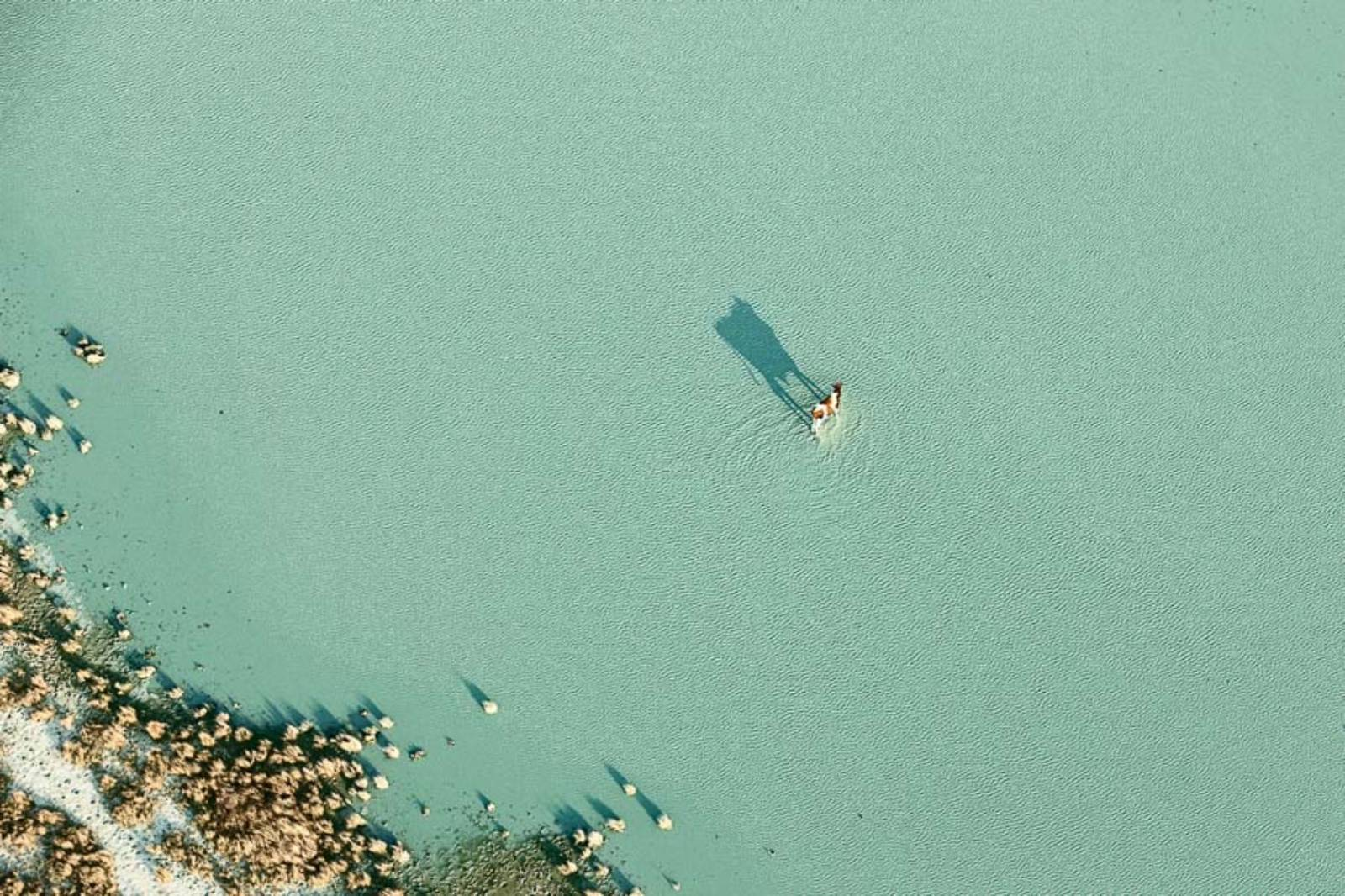 "© Zack Seckler, ""Botswana Bath,"" 2009, Archival pigment print, Courtesy of ClampArt, New York City"