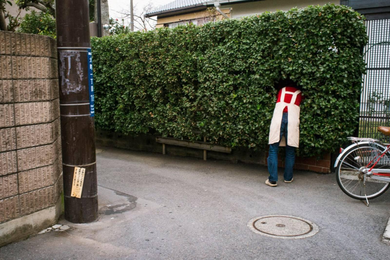Omachi, Kamakura, Dec 2011 ©️ Shin Noguchi