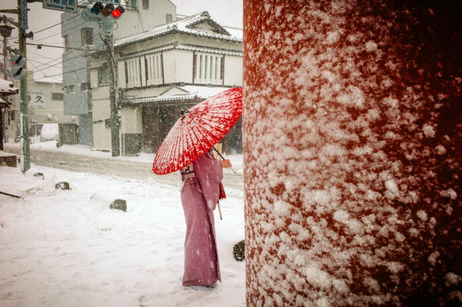 Heavy Snow Day, Tsurugaoka Hachimangu Shrine, Yukinoshita, Kamakura, Feb 2014 ©️ Shin Noguchi