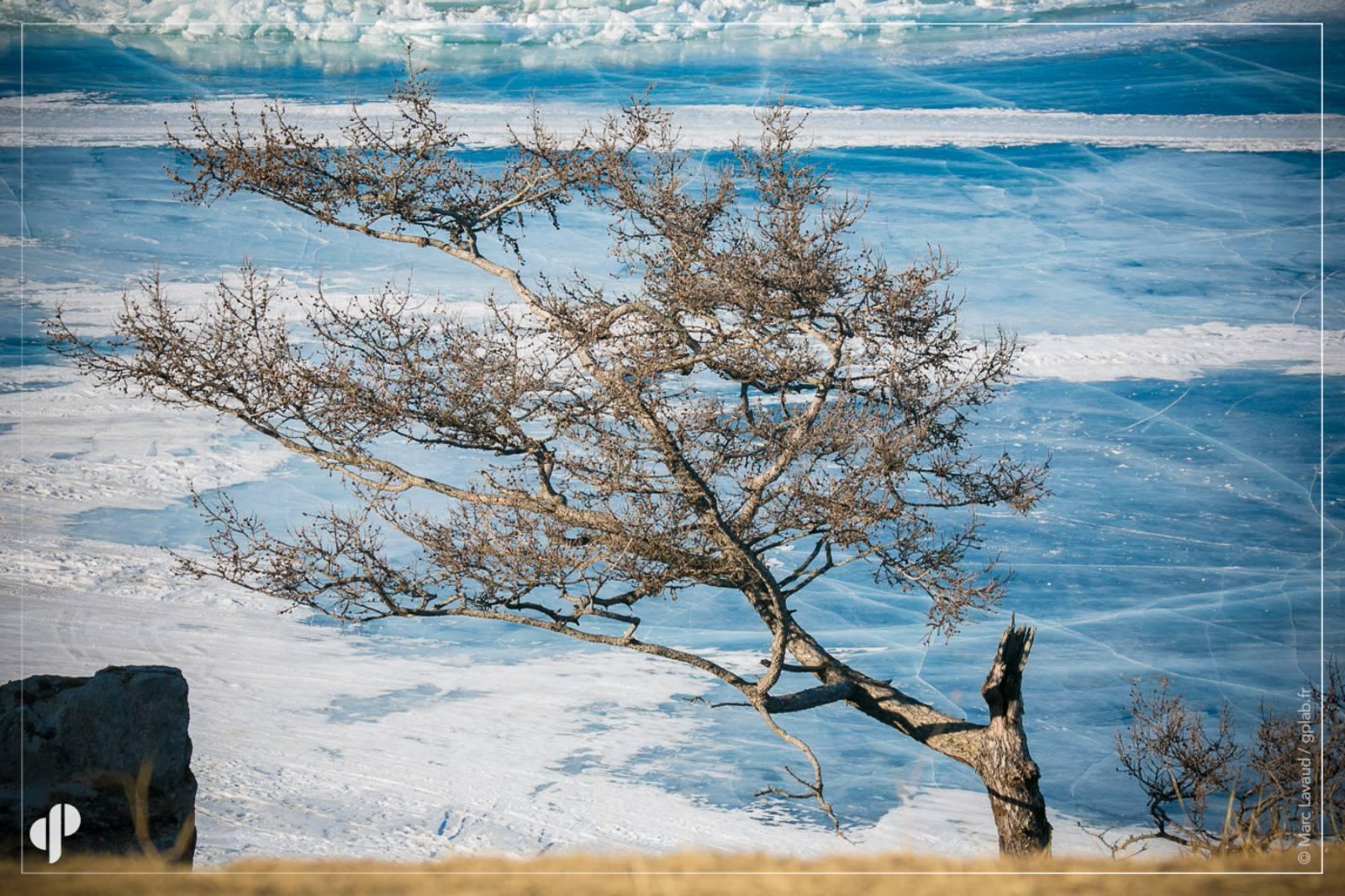 grainedephotographe_Baikal_Jour5_Marc8.jpg