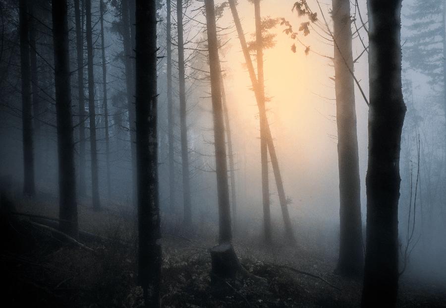 Sombre mais envoutante, plongez dans l'atmosphère cinématographique de Filippo Giani